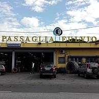 PASSAGLIA FULVIO